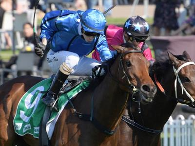 Matthew Dale Trained Elm Court Wins Highway