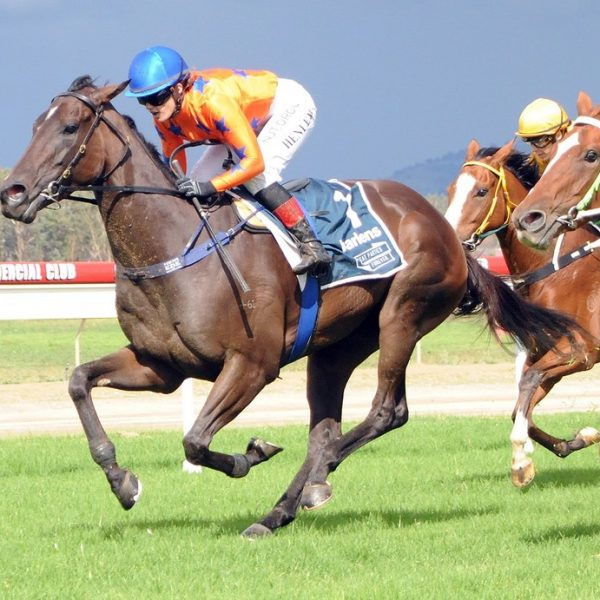 Irresistable Girl Breaks Maiden in first run for M.Dale