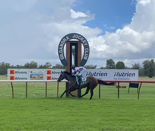 Double for Crockett on Gilgandra Cup Day